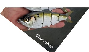 "6"" Freestyle Shad - SOLD OUT!"